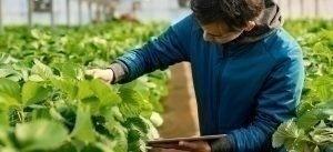 La Cyber-Sécurité dans le secteur agro-industriel